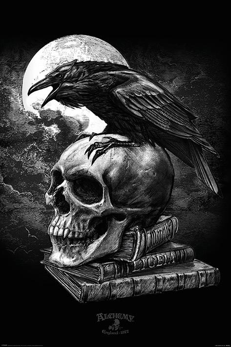 Alchemy Poe's Raven Maxi Poster [61 x 91.5 cm]