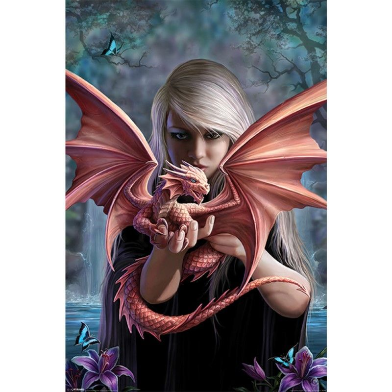 Anne Stokes Dragonkin Poster [61 x 91.5 cm]