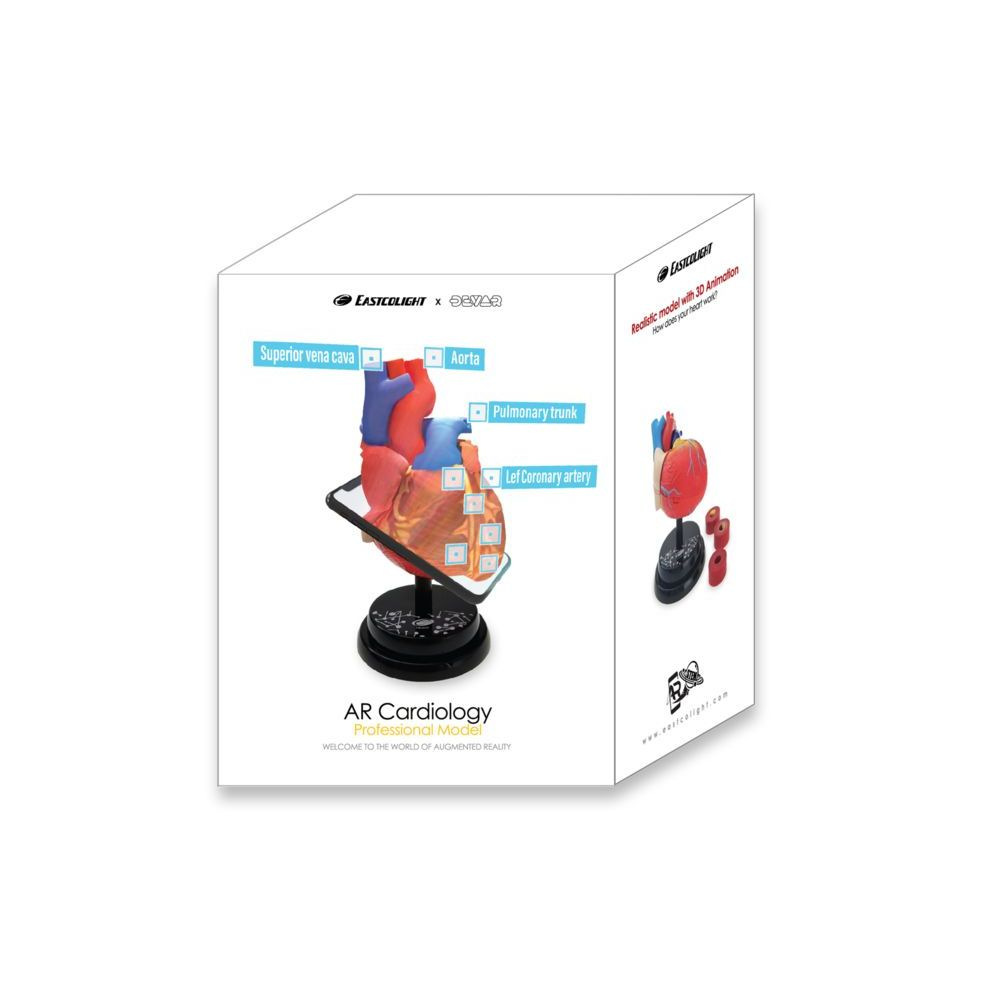 Eastcolight Ar Cardiology Professional Model