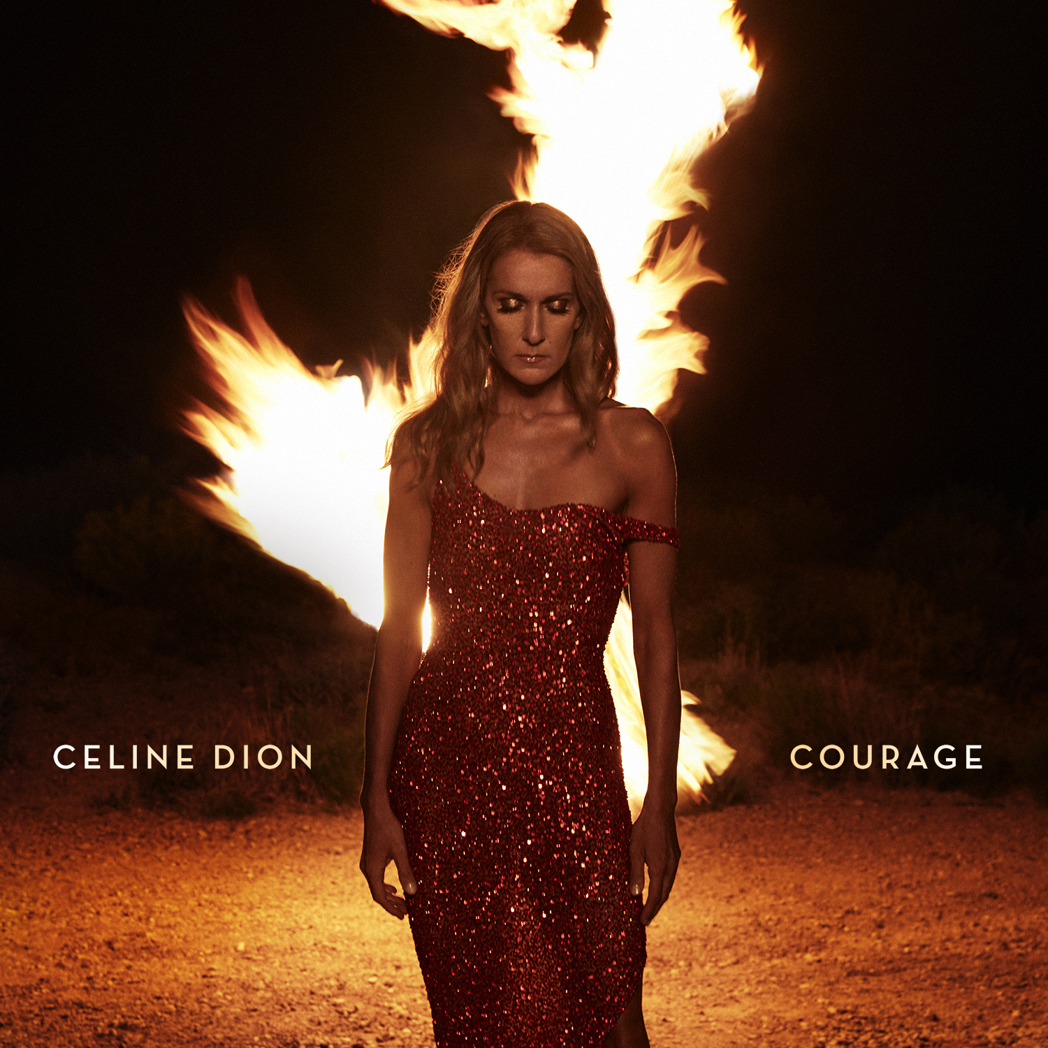 Courage by Celine Dion
