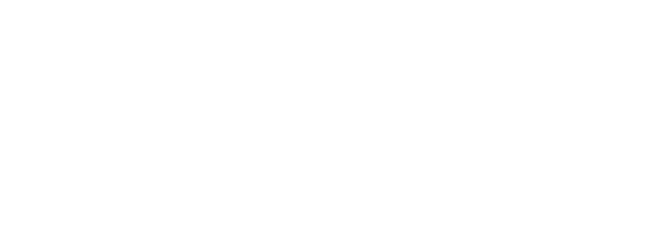 The Red Express Holiday Gift Guide