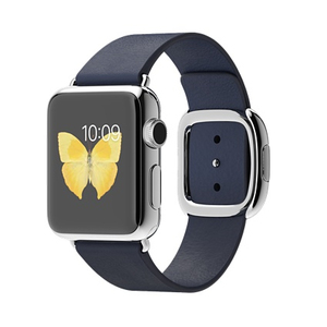 Apple Watch 38mm Stainless Steel Case Midnight Blue Modern Buckle Medium