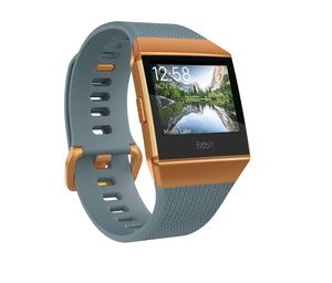 Fitbit Ionic Slate Blue/Burnt Orange Smart Watch