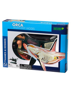 Thames & Kosmos Animal Anatomy: Orca