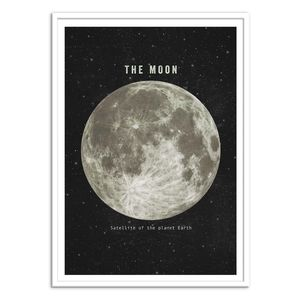 The Moon Art Poster by Terry Fan [30 x 40 cm]