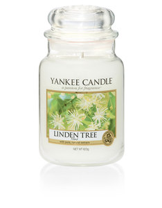 Yankee Candle Linden Tree Classic Jar [Large]