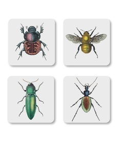 Magpie Curios Coasters Insects [Set of 4]