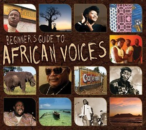 BEGINNERS GUIDE TO AFRICAN VOICES / VARIOUS