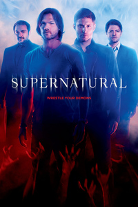 Supernatural: Season 11 [6 Disc Set]