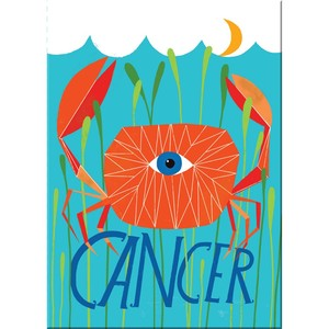 Emily Mcdowell Cancer Magnets