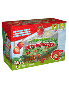 Science 4 You Eco Science Fruit Greenhouse Strawberries