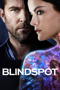 Blindspot: Season 2 [5 Disc Set]