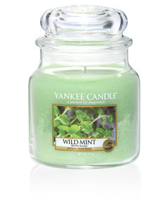 Yankee Candle Mint Classic Jar Medium Wild Mint