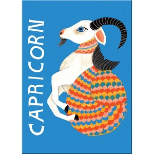 Emily Mcdowell Capricorn Magnets