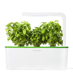 Click & Grow Smart Herb Garden W/Lamp Green