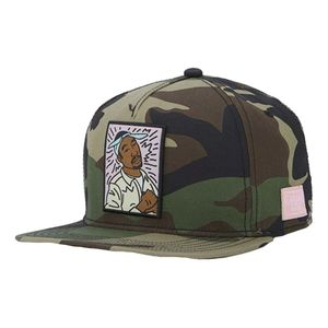 Cayler & Sons Wl King Lines Mens Cap Camo/MC