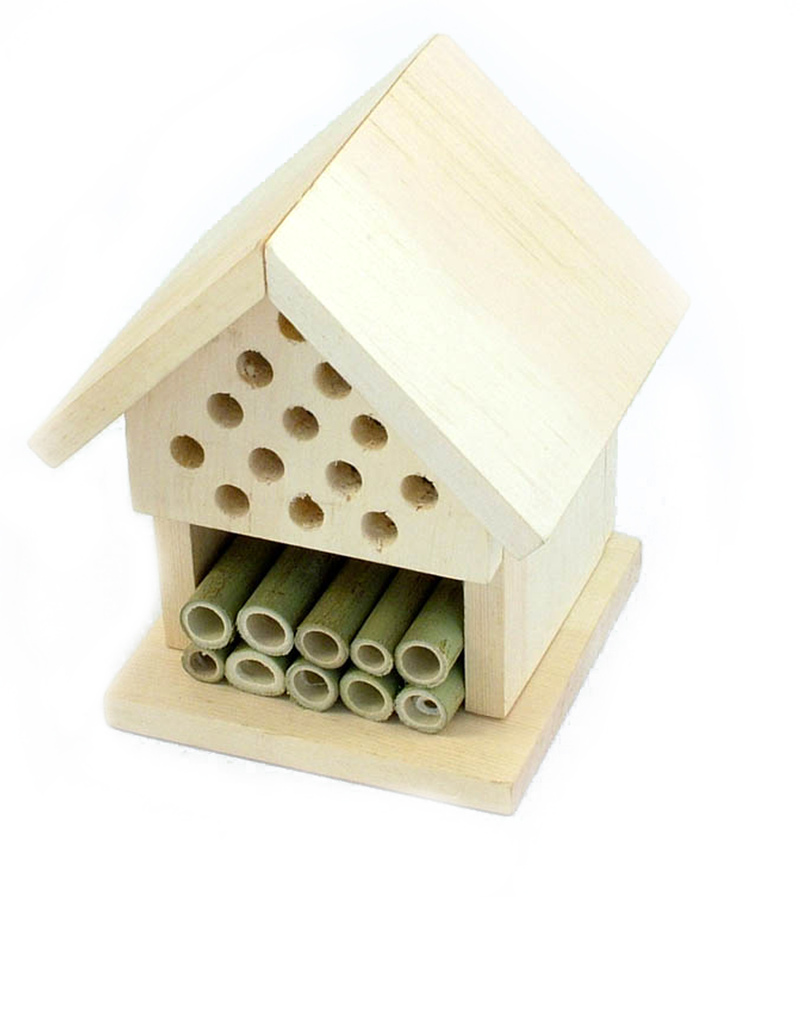 Apples To Pears Make Your Own Insect House Craft Kits