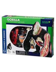 Thames & Kosmos Animal Anatomy: Gorilla