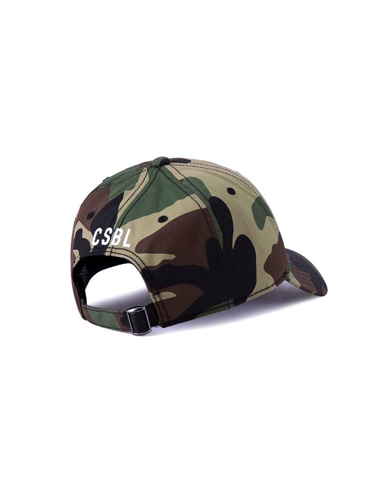 Cayler & Sons 9664 Curved Men's Cap Woodland Camo/White