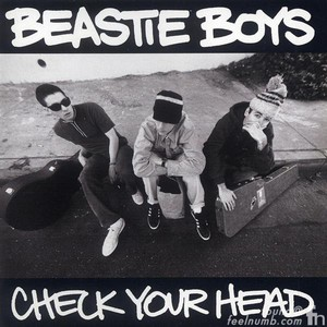 CHECK YOUR HEAD (OGV) (RMST)