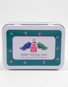 Apples To Pears Mini Racing Car