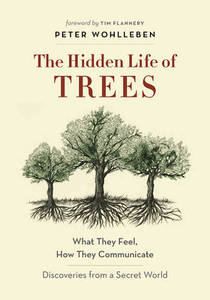 The Hidden Life of Trees: What They Feel