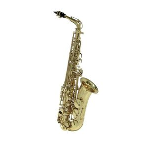 Conn Selmer Conn Eb Alto Saxophone Gold Lacquer Finish [Includes Carrying Case & Mouthpiece]