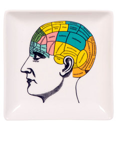 Magpie Wellcome Collection Curios Trinket Tray Phrenology