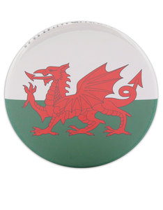 I Want It Now Wales Fridge Magnet
