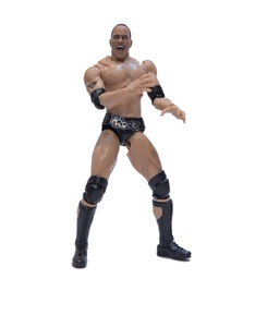 Bandai S.H.Figuarts WWE The Rock Action Figure