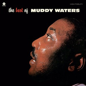 Best Of Muddy Waters (Picture Disc) (Pict) (Can)