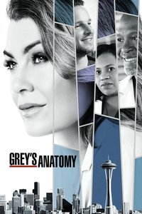 Grey's Anatomy: Season 13 [6 Disc Set]