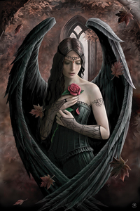 Anne Stokes Angel Rose Maxi Poster [61 x 91.5 cm]