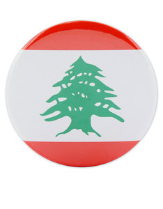 I Want It Now Lebanon Fridge Magnet