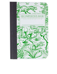 Decomposition Notebook Dinosaurs Two Color [Pocket]