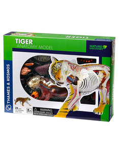 Thames & Kosmos Animal Anatomy: Tiger
