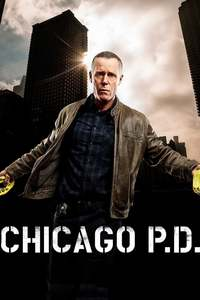 Chicago P.D.: Season 4 [6 Disc Set]