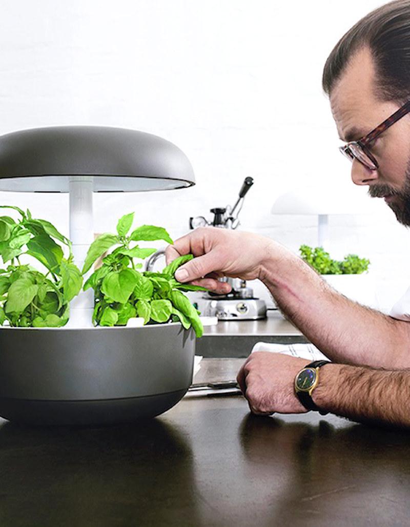 plantui 6 smart garden grey indoor gardening cooking. Black Bedroom Furniture Sets. Home Design Ideas