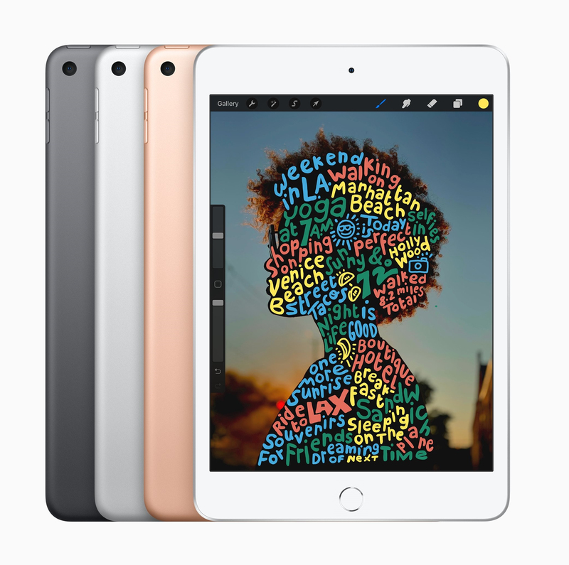Afholte iPad Mini Wi-Fi + Cellular 256GB Space Grey   iPad   Apple IX-67