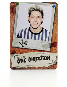 One Direction Complete Palette Collection Niall