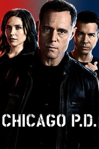 Chicago P.D.: Season 3 [6 Disc Set]