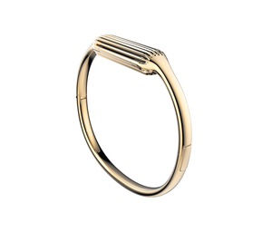 Fitbit Flex 2 Gold Small Bangle
