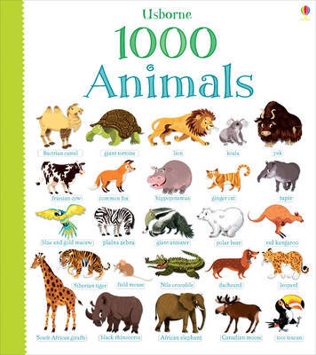 1000 animal stickers 4 to 8 years kids teens books virgin