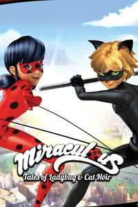 Miraculous Tales of Ladybugs & Cat Noir: Season 1