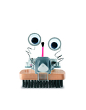 Brush Robot Science Kit