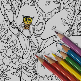 adult-coloring-books books