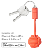Native Union Key Cable L Coral Lightning Cable