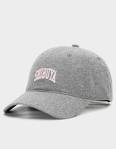 b3ee03a994c79 Cayler   Sons Oath Grey Heather Curved Cap