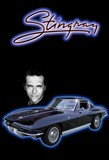 Stingray Complete Coll Dvd