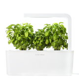 Click & Grow Smart Herb Garden With Lamp White